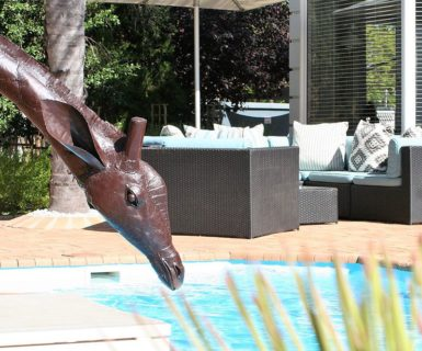 Pictures Guest House Swimming Pool